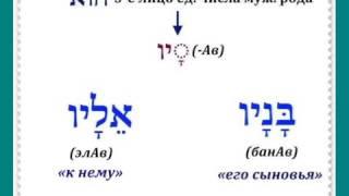 Урок № 22  Местоименные суффиксы множества объектов в иврите