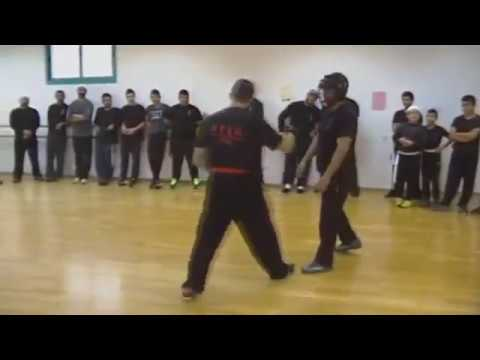 Wing Chun - Cheats, inputs, hitting in free fight