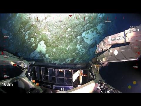 ROV SuBastian Dive 061 - Kingman Reef - Sea Level Secrets Expedition