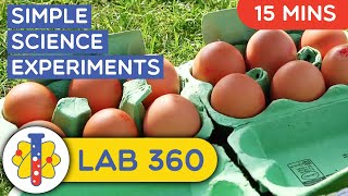 Lab 360 | Simple Science Experiments | You Can Do At Home
