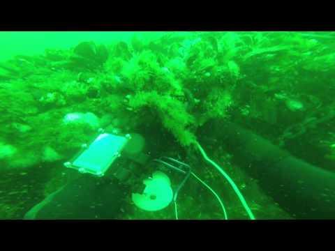 Second Sidemount Ocean Dive Part 1 9 7 2014