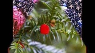 Video Every Year, Every Christmas. (special made for 23anyer) download MP3, 3GP, MP4, WEBM, AVI, FLV September 2018