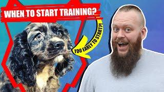 When Should I Start Training My SPANIEL PUPPY?
