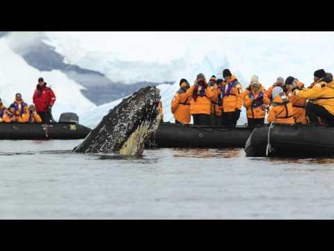 Wilhemina Bay, Antarctic Peninsula
