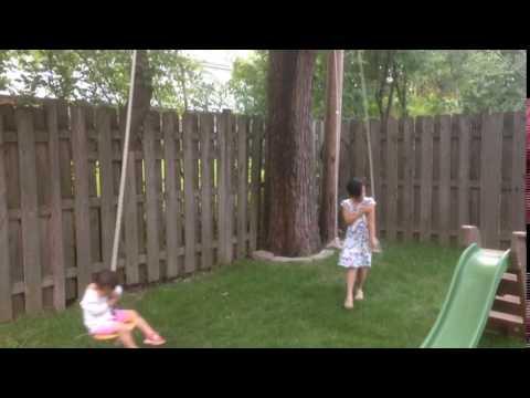 Tree swings backyard
