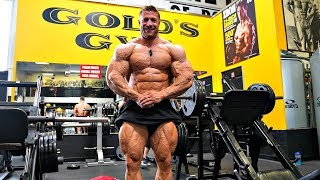 Training im Golds Gym. Tim sieht brutal aus