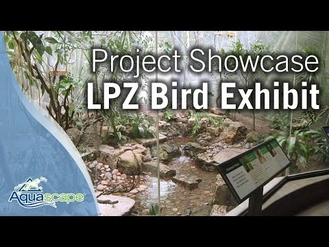 Lincoln Park Zoo Bird Exhibit Project Showcase