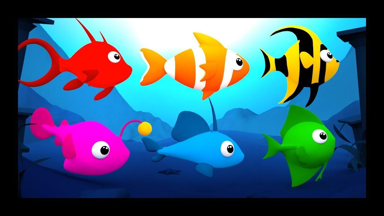 les petits poissons dans l 39 eau comptines et chansons pour les b b s titounis youtube. Black Bedroom Furniture Sets. Home Design Ideas