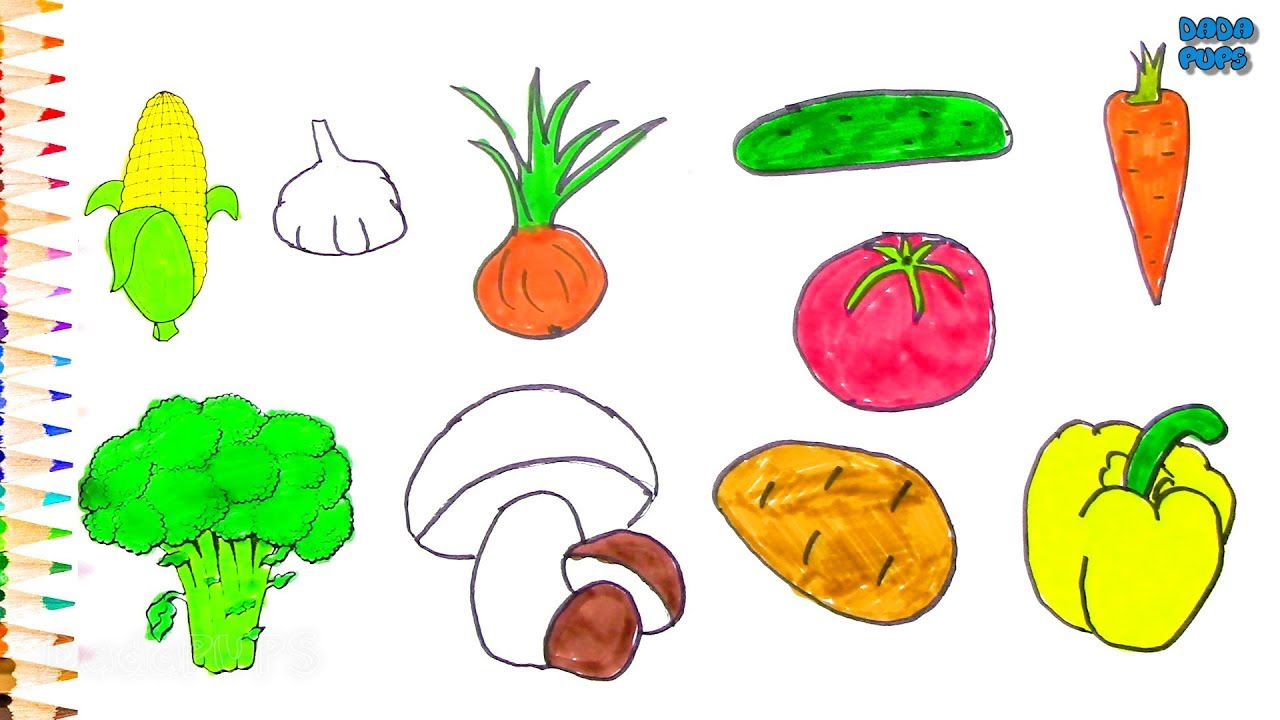 Newest For Vegetables Drawing For Kids With Names