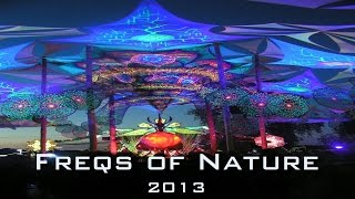 FREQS OF NATURE 2013 Compilation (12min) - Groove and Forest Floor - Open Air Goaparty