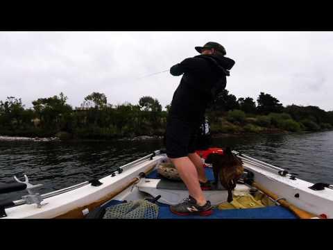 Derwent River Bream Fishing. Tasmania.