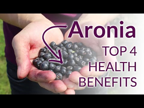 The Top 4 Amazing Aronia Berries Health Benefits!