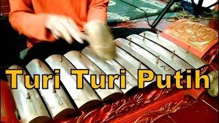 Download Lagu TURI TURI PUTIH / Javanese Gamelan Music Jawa / Karawitan KAGAMA Sekar Gending [HD] mp3