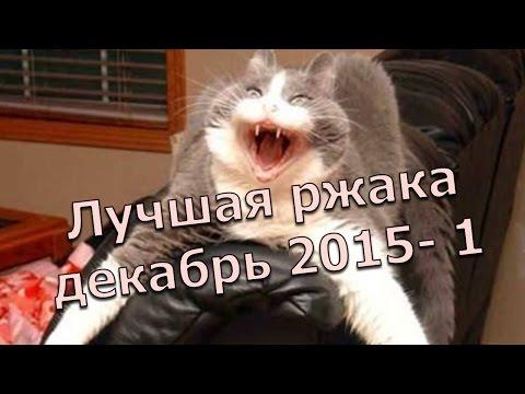 ПРИКОЛЫ 2015, Прикол - 6 Декабря 2015