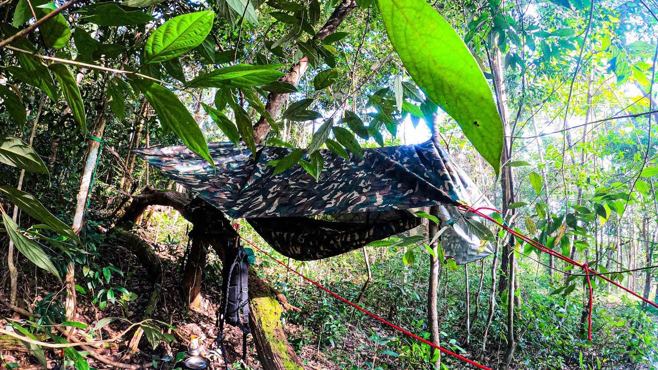 นอนป่าทำอาหารกิน แกงไก่สูตรชาวดอย กินในป่าอร่อยมากหมดหม้อ บรรยากาศเงียบสงบเหมาะแก่การพักกผ่อนที่สุด