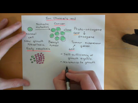 Ion channels and cancer Part 1