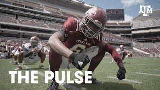 The Pulse | Season 4 Teaser