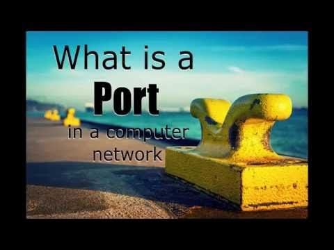 What is a port in computer networking?