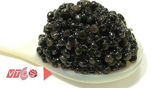 Thật như đùa: Việt Nam xuất khẩu Caviar sang Nga | VTC