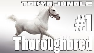 Tokyo Jungle: Thoroughbred Survive over 100 years  Part 1 of 4