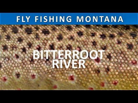 Fly Fishing Montana Bitterroot River - Bell Crossing To Stevensville: April Season 4 Episode 8
