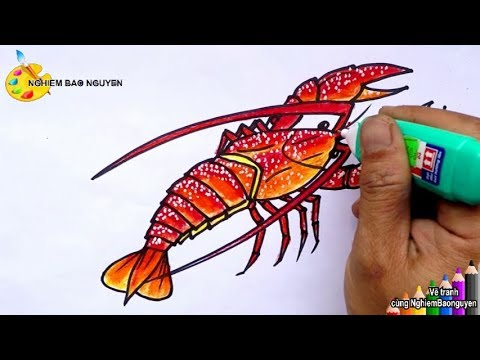 Vẽ con tôm hùm/How to draw a Lobster