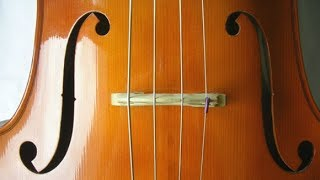 Bach - Cello Suite No. 5  in C minor, BWV 1011 (cello)