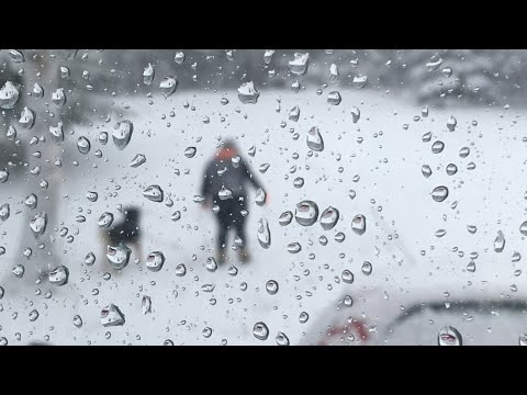 BIG WINTER STORM! | NOVA SCOTIA
