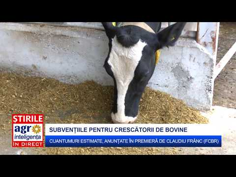 Subvenții APIA 2017: Cuantumuri estimate bovine