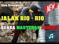 Suara Masteran Burung Jalak Rio Rio Gacor Tembakan Tajam Terbaik  Mp3 - Mp4 Download