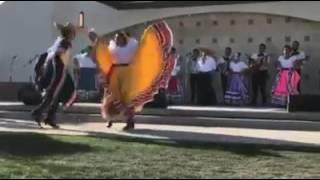 El Gavilan - Mariachi