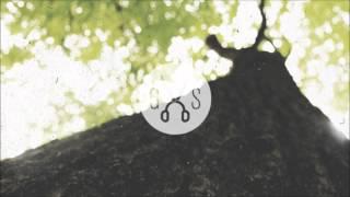 Zimmer - Galapagos Thumbnail