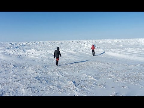 Strange Ice Thickness Hudson Bay & 18th Fissure Opens in Hawaii (604)