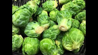 Brussels Sprouts Stalk - Handling and Prep -  Tips & Tricks #31