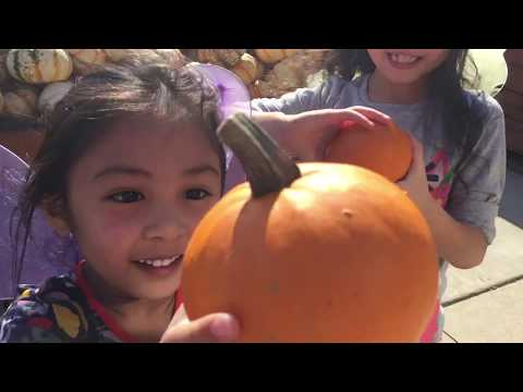 Goebbert's Pumpkin Farm @ South Barrington, Illinois