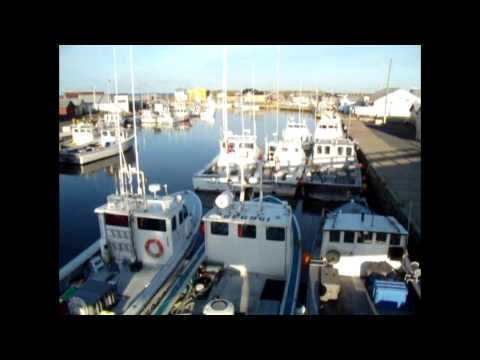Video Tour Of North Lake, PEI - Tony's Tuna Fishing