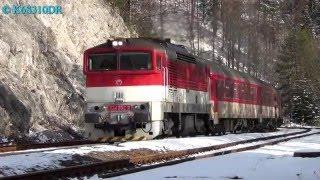RJ 750 096 & ZSSK 754 052
