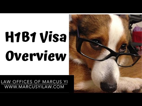 H1B1 Visa Requirements And How To Apply
