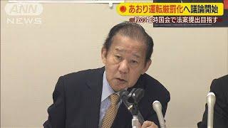 あおり運転厳罰化へ 自民党が法案提出目指す(19/08/27)