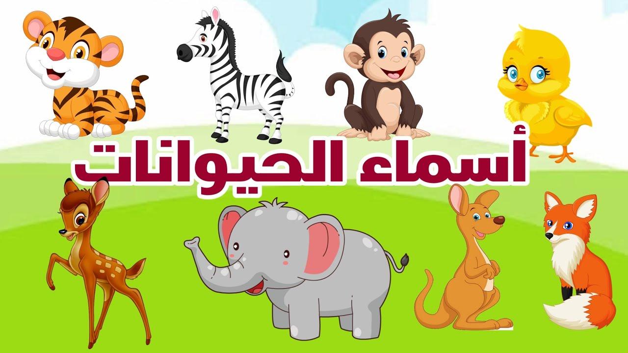 الحيوانات للأطفال - تعليم الاطفال اسماء الحيوانات واصوتها- Names and sounds of animals