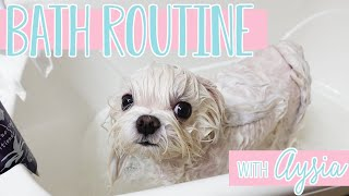Bath Routine for a White Dog:  How to Give Your Dog a Spa Bath Day at Home  With Aysia the Maltese