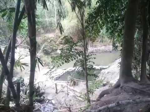 Polaman River Tubing Manfaatkan Bambu Untuk Mempercantik Lokasi