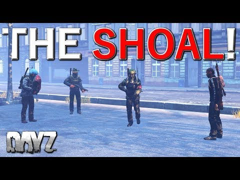 Old School Adventures In DayZ - The Shoal!