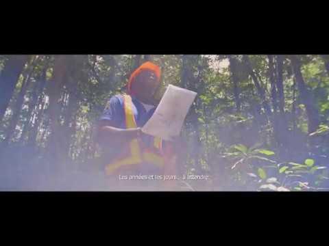 """Vidéo """"You're wrong!"""" - Compagnie des Bois du Gabon"""