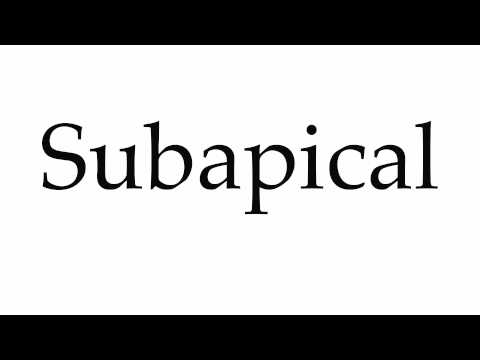 How to Pronounce Subapical