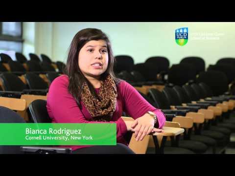 UCD Lochlann School of Business Study Abroad Programme