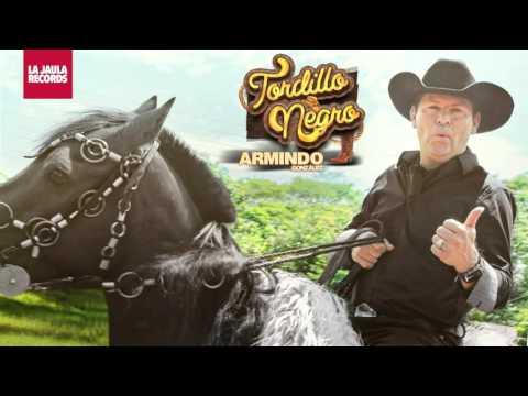 Tordillo Negro - Tordillo Negro / El Regreso del Tordillo Negro (Audio)