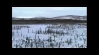 Iditarod Trail Song by Alaskas Hobo Jim