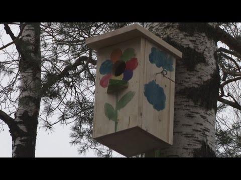 ТВЭл - Школьники Электрогорска повесили почти 40 скворечников в День птиц (01.04.16)