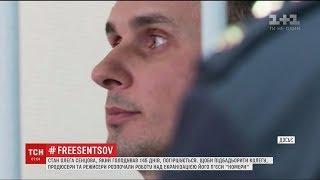Сестра Сенцова розповіла про життя бранця після голодування